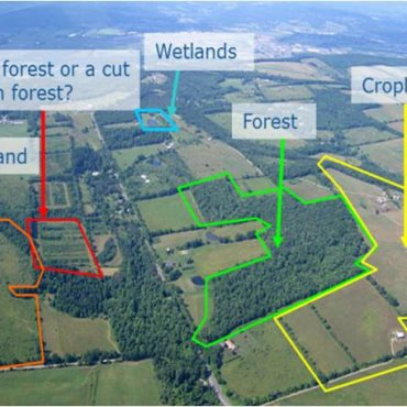 LULUCF – Land Use, Land-Use Change and Forestry