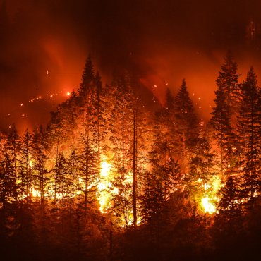 EFFIS – European Forest Fire Information System